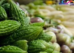 5 Makanan Pahit yang Bisa Tingkatkan Imun Tubuh