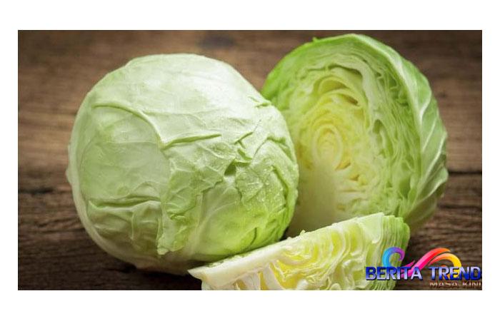 5 Manfaat Mengesankan Sayur Kubis untuk Kesehatan